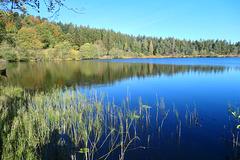 Le Lac de Laspialade en Auvergne