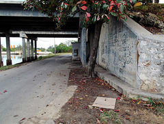Sous les ponts de Varadero