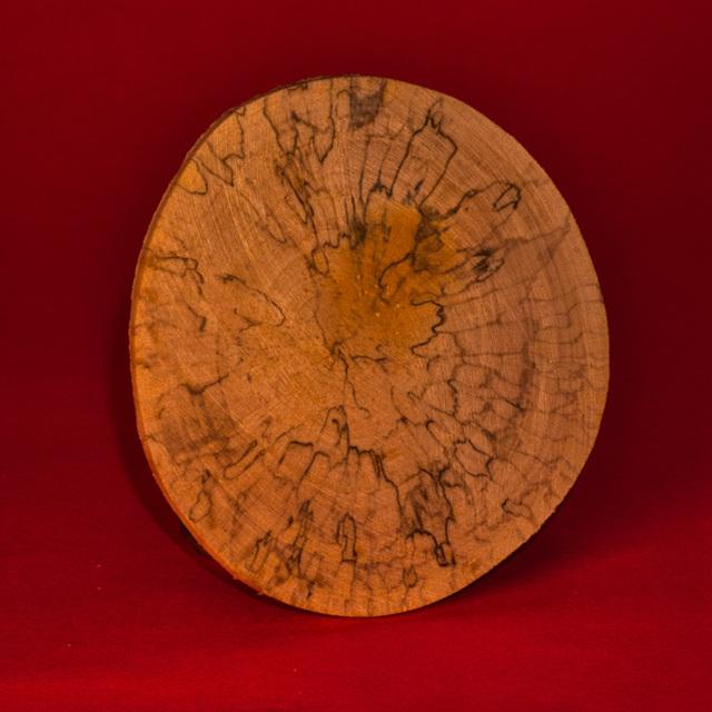 Pilzbefall im Holz
