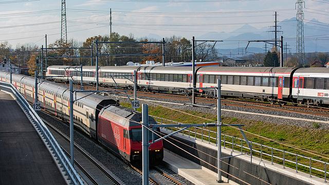 201112 Eppenberg fer 1