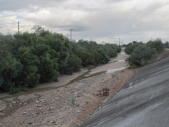 It rained in the night so Tucsonians awoke to find that the Julian Wash had water and shopping buggies in it.