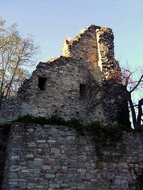 Castle ruins in Montecanino