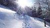 winter walk (2 x PiP)