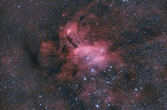 Prawn Nebula IC4628