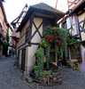 T like TIMBERED HOUSE in EGUISHEIM / ALSACE