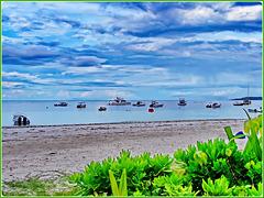 Seychelles : la grande spiaggia di Praslin