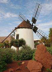 Windmühle in Antigua