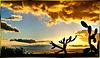 La Palma, Sunrise. ©UdoSm