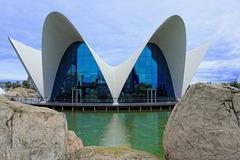 das Oceanogràfic Valencia (© Buelipix)
