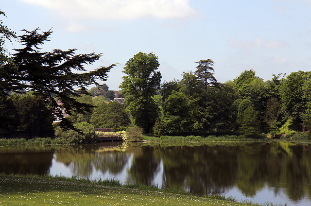 Wisteria Bridge, Sherborne gardens