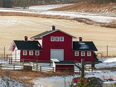 """New """"barn"""", Granary Road"""