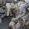 Cornwall - beach geology