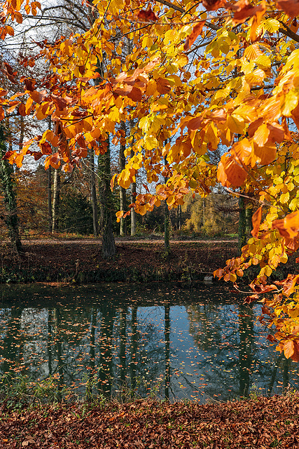 201112 Schoenenwerd parc Bally 9