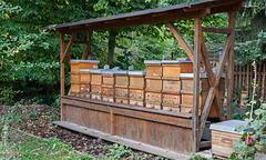Historic Bee Hive Boxes.