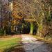 201112 Schoenenwerd parc Bally 16