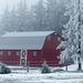Red barn through the fog
