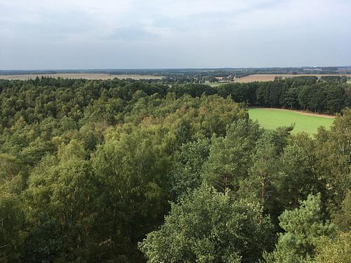 Ausblick vom Gauß-Turm // -landschaft 6563