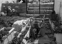 Garden work in progress at Parikia