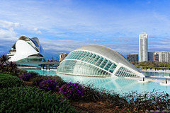 Valencia - Ciudad de las Artes y de las Ciencias (© Buelipix)