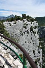 a fence and climbers...HFF!