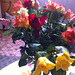 More of my roses