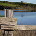 Tomales Bay Fence