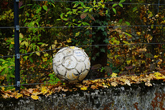 Der Ball im Zaun - The ball in the fence - HFF