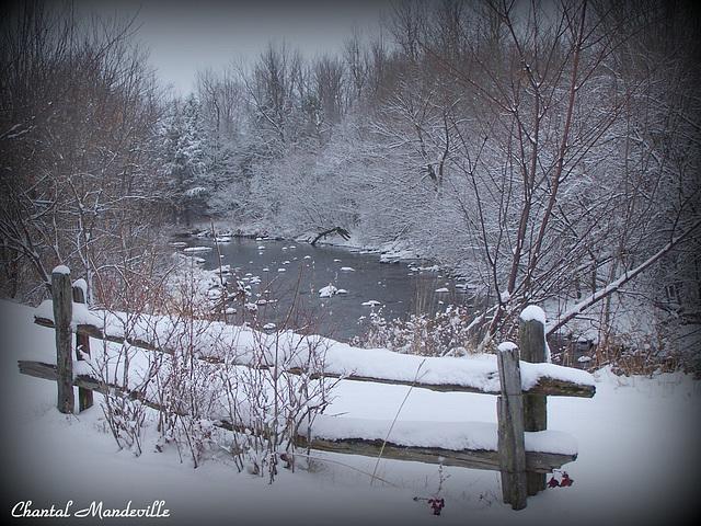 Sur le bord de la rivière...