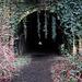 Usk Tunnel