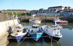 TiG - Seahouses fleet