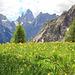 letzter Blick von den Innergsellwiesen auf den Zwölferkogel (Bildmitte)