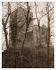 Turmberg-Ruine (HFF)