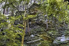 Toeholds – Watkins Glen State Park, Watkins Glen, New York