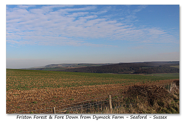 Friston Forest & Fore Down from Dymock Farm Seaford 19 1 2016