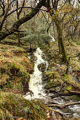 Glendalough 32