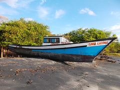 Bateau béni / Barco bendita / Blessed boat