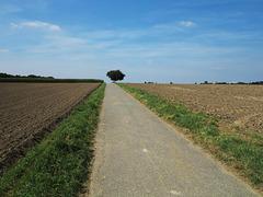 Autobahn A 31 von Bad Neuenahr nach Emden....
