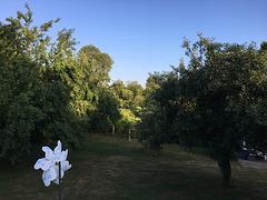 À l'ombre dans un jardin ami .