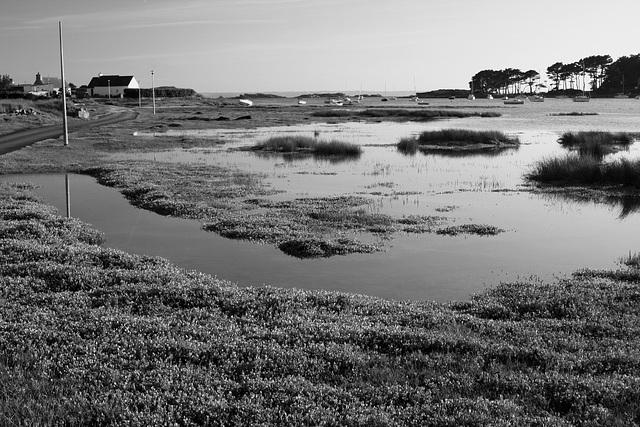 Calme avant la marée