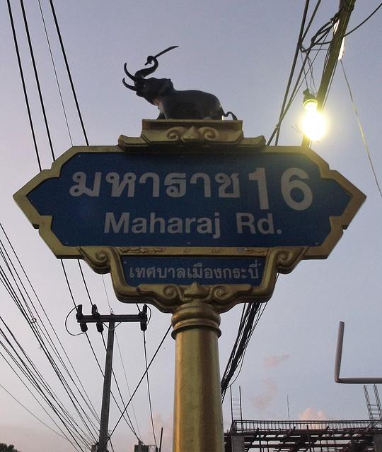 Éléphant Maharaj