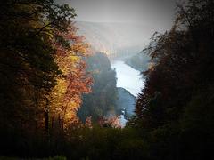 Donau im Herbstlicht