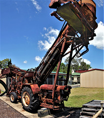 Early cane harvester