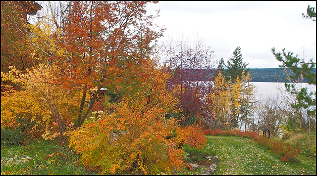 Fall at Lac La Hache, BC