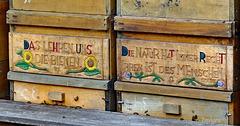 Bee box wisdom