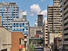 Elizabeth Street, Toronto