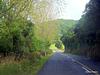 Quiet Road.