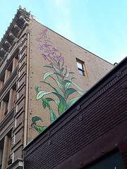 Hidden Flower Mural