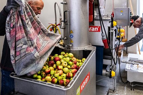 Private Apple Processing Cooperative