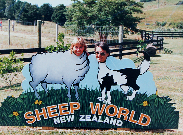 109/365 Sheep World New Zealand
