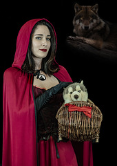 Capuccetto Rosso/  Little Red Riding Hood / Rotkäppchen/  Petit chaperon rouge.